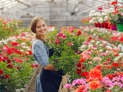 Woman in a greenhouse. Lady works with flowerpoots. Girl in a black apron.